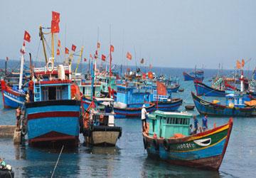 Радио Голос Вьетнама оказывает содействие рыбакам в ведении рыбного промысла в традиционном районе