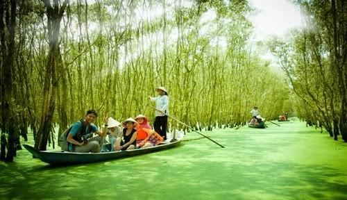 Путешествия по району Донгтхап Мыой в сезон паводков
