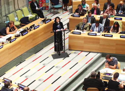 Vietnam pledges continued contributions to ECOSOC