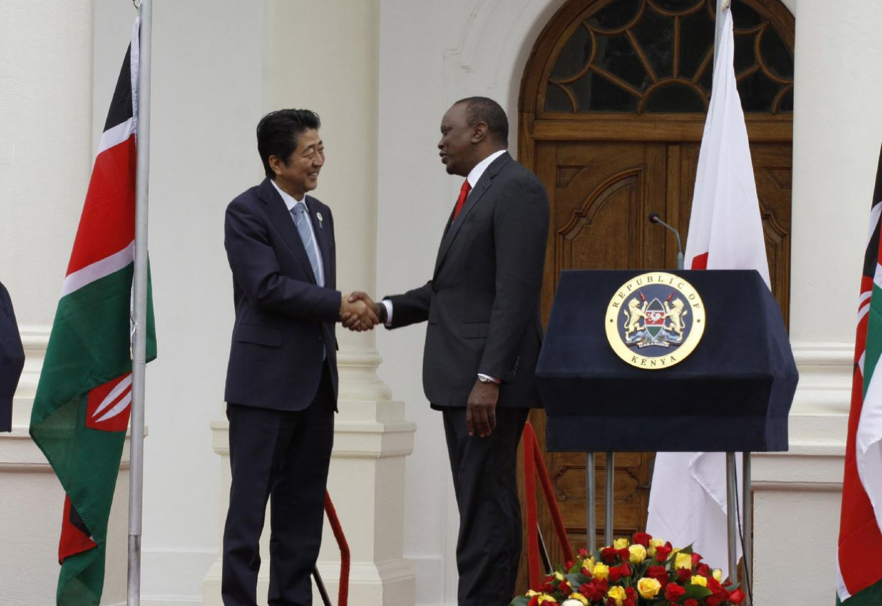 Japan defines priorities for cooperation with Africa