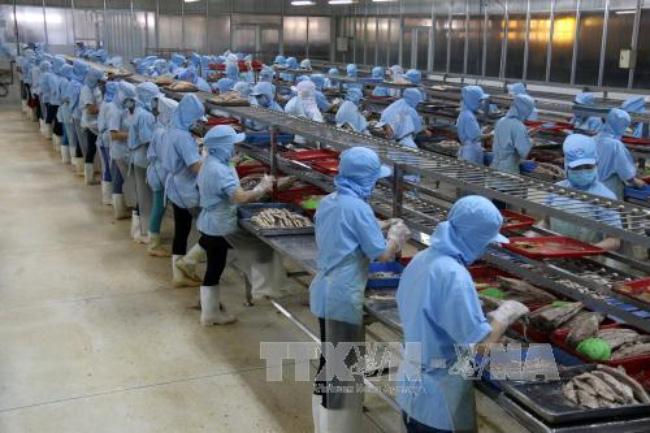 Vietnam's economy remains stable amidst global slowdown
