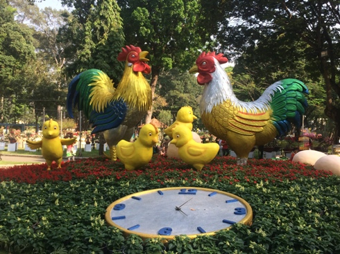 Spring flower festival welcomes New Year in Ho Chi Minh city