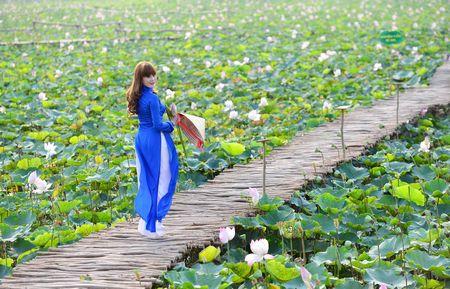 Einwohner in Dong Thap verdienen gut in der Hochwassersaison