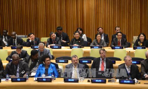 เวียดนามพร้อมที่จะร่วมมือกับประชาคมโลกอนุรักษ์สิ่งแวดล้อมทางทะเล
