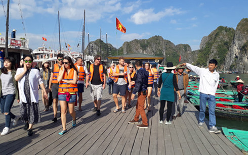 Ha Long Bay welcomes 26,000 visitors on New Year holiday