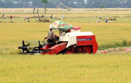 Mobilizing scientists to agricultural restructuring