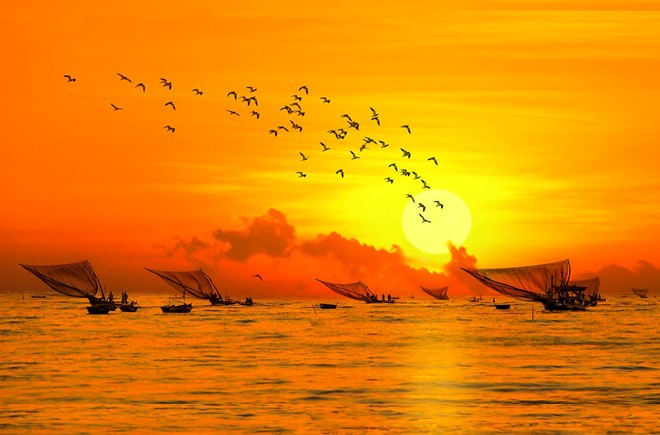 Stunning beauty of Danang city through local photographers