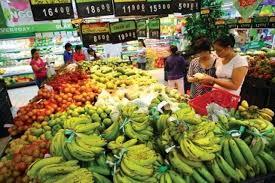 进行深度加大投资增加蔬菜瓜果出口额