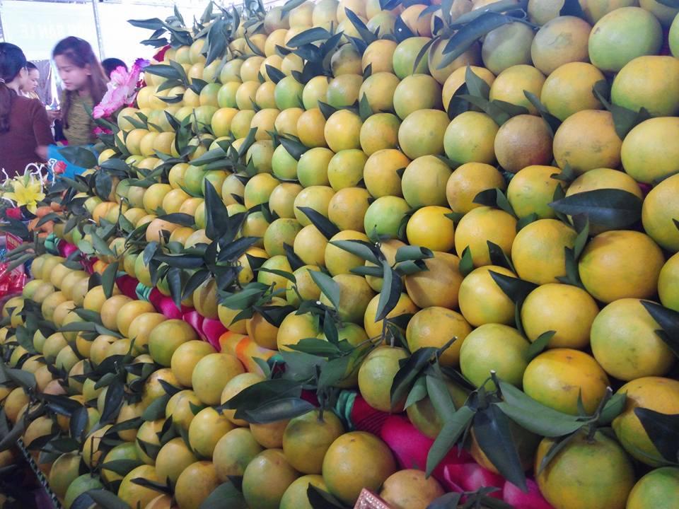 Сельское хозяйство Вьетнама оcознает стоящие перед ним вызовы и готово преодолеть их