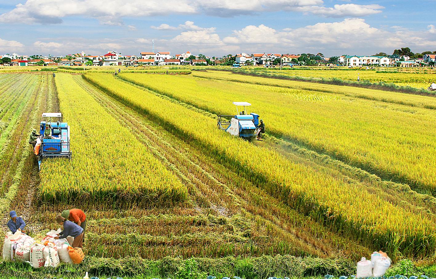 Agriculture : Quelles solutions pour 2017 ?