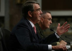 Pentagon details anti-IS aid to Southeast Asian allies