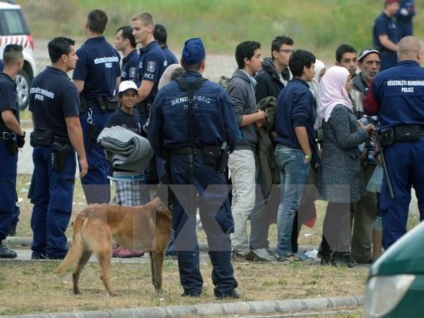 «Вышеградская группа» раскритиковала миграционную политику ЕС