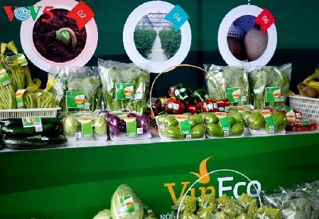 河南省发展高科技农业