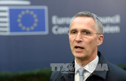 NATO rules out interference into Syrian war