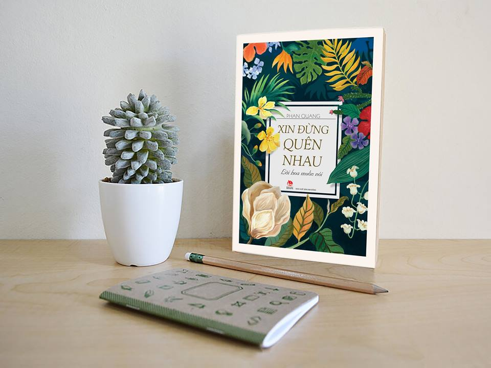 Sách Kim Đồng tại Phố Sách Xuân Đinh Dậu: Mừng tuổi bằng sách