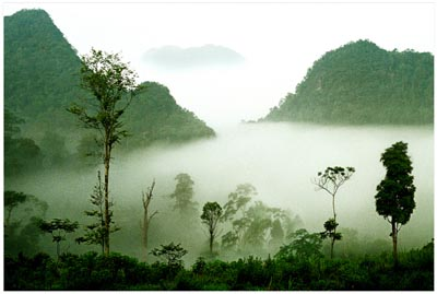 Der Nationalpark Xuan Son in Phu Tho