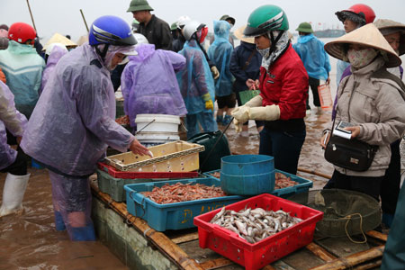 Morgens auf dem Fischmarkt in der Gemeinde Giao Hai in Nam Dinh