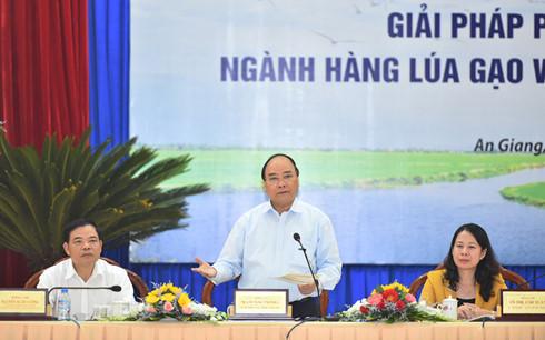 Nachhaltige Entwicklung des Reises im Mekongdelta