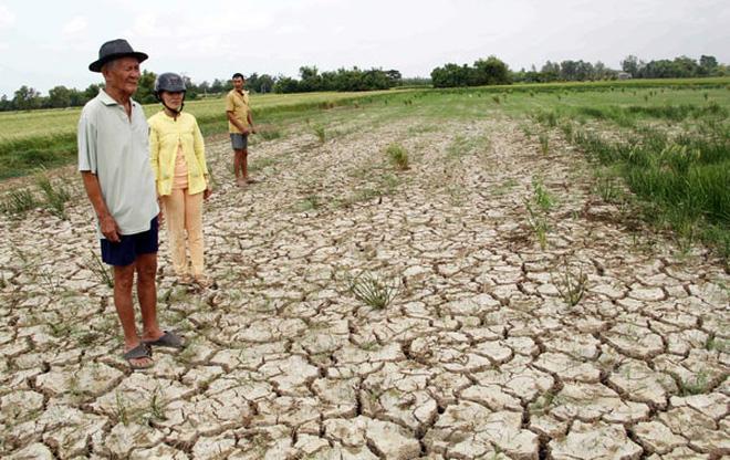 หน่วยงานการเกษตรเวียดนามฟันฝ่าความท้าทายเพื่อการขยายตัว