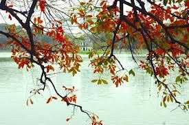 Nhớ Mùa Thu Hà nội--Missing Hanoi's Autumn