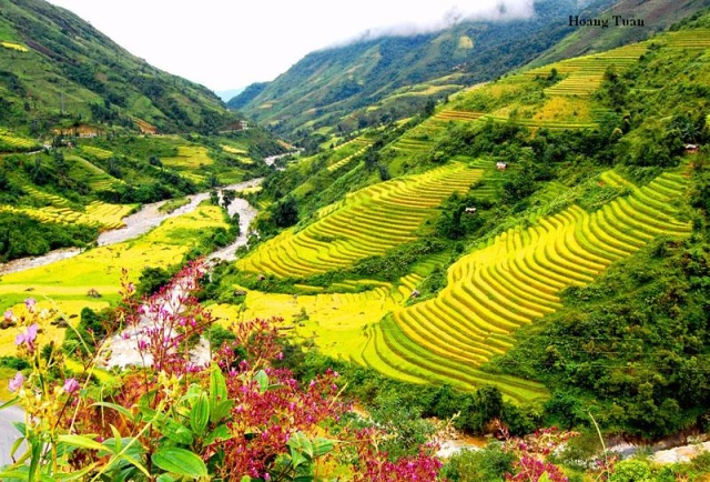Muong Hoa- a romantic valley in Sapa
