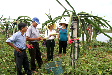 Khanh Thien – the first commune to meet the new rural development criteria in Ninh Binh