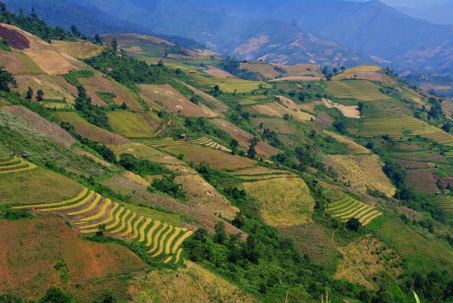 Terraced paddy fields in Chieng An