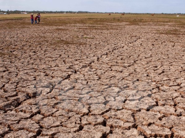 Aids help localities cope with drought and saline intrusion