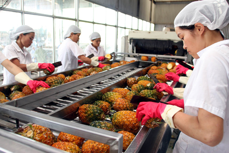 Vietnam's export of agricultural products in the integration context