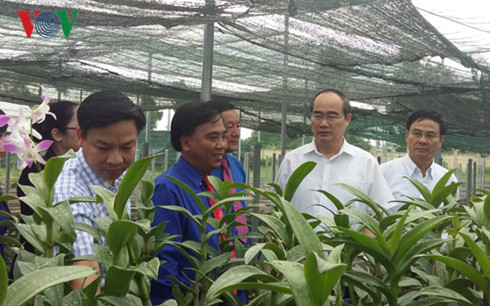 Dong Thap urged to create rice, flower varieties