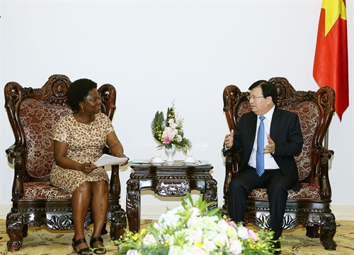 Deputy Prime Minister Trinh Dinh Dung receives WB Vice President