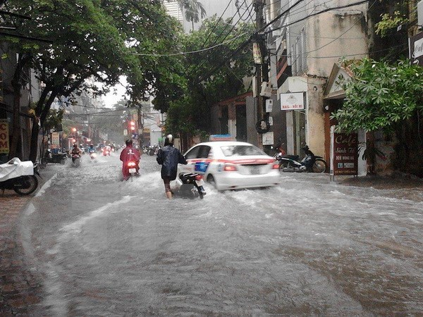 Vietnam recovers damage from Dianmu storm