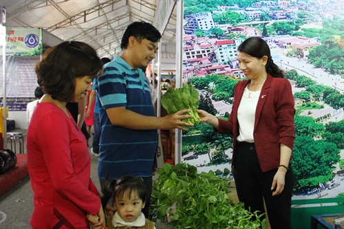 Thai Nguyen hosts trade fair on local products