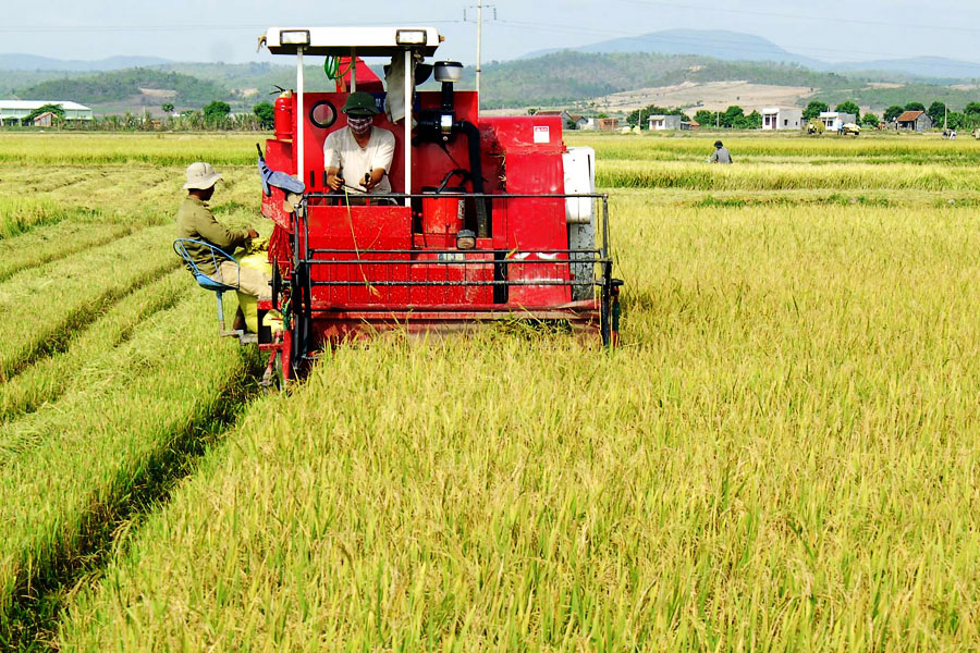 Agricultural sector moves from negative to positive growth