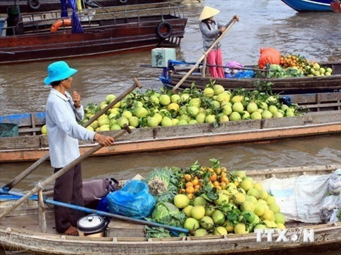 Mekong Delta International Agriculture Festival kicks-off with presser