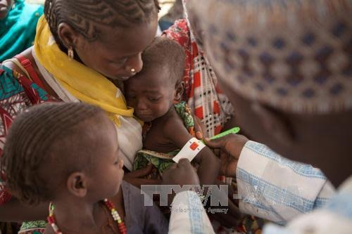 UN calls for 5.6 billion USD donation for famine fighting in four countries