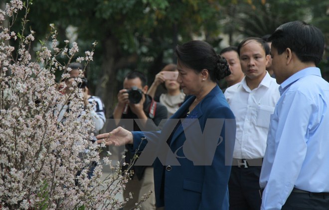 NA Assembly Chairwoman enjoys cherry blossoms