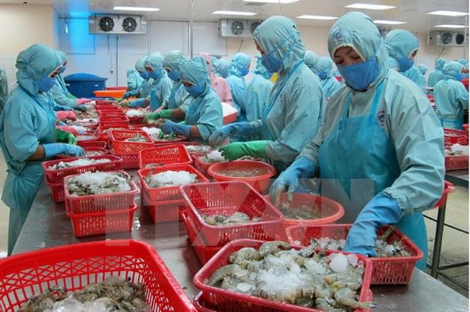 Vietnamese aquatic products strive to regain confidence in Europe