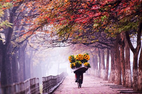 ハノイの秋にちなんだ歌