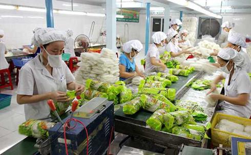 Melakukan investasi intensif untuk turut meningkatkan nilai ekspor hortikultura