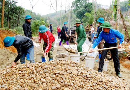 安沛省青年携手建设新农村