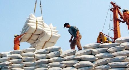 Exportación de alta calidad, nueva orientación para el sector arrocero vietnamita