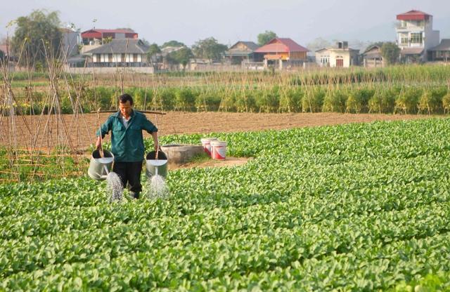 Kecamatan Tuy Loc, kota Yen Bai mencapai patokan pedesaan baru