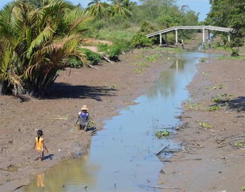 Kaum tani Daerah Dataran Rendah Sungai Mekong beradaptasi dengan musim tanpa banjir