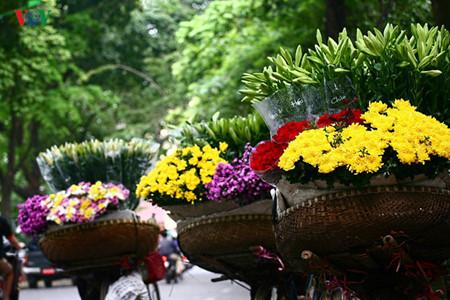 Liliengewächse auf den Straßen Hanois