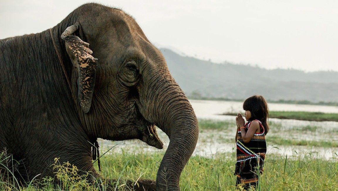Sự đa dạng văn hóa tại Việt Nam qua góc nhìn của nhiếp ảnh gia Pháp