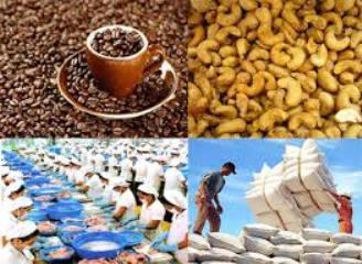 年初8ヶ月の農林水産物の輸出額、200億ドルを上回る