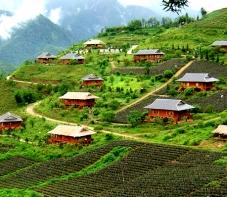 2017年一季度越南接待320万人次国际游客