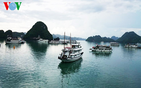 ASEAN to develop cruise tourism