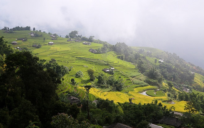 Lyrical rice terraced landscapes of Hoang Su Phi